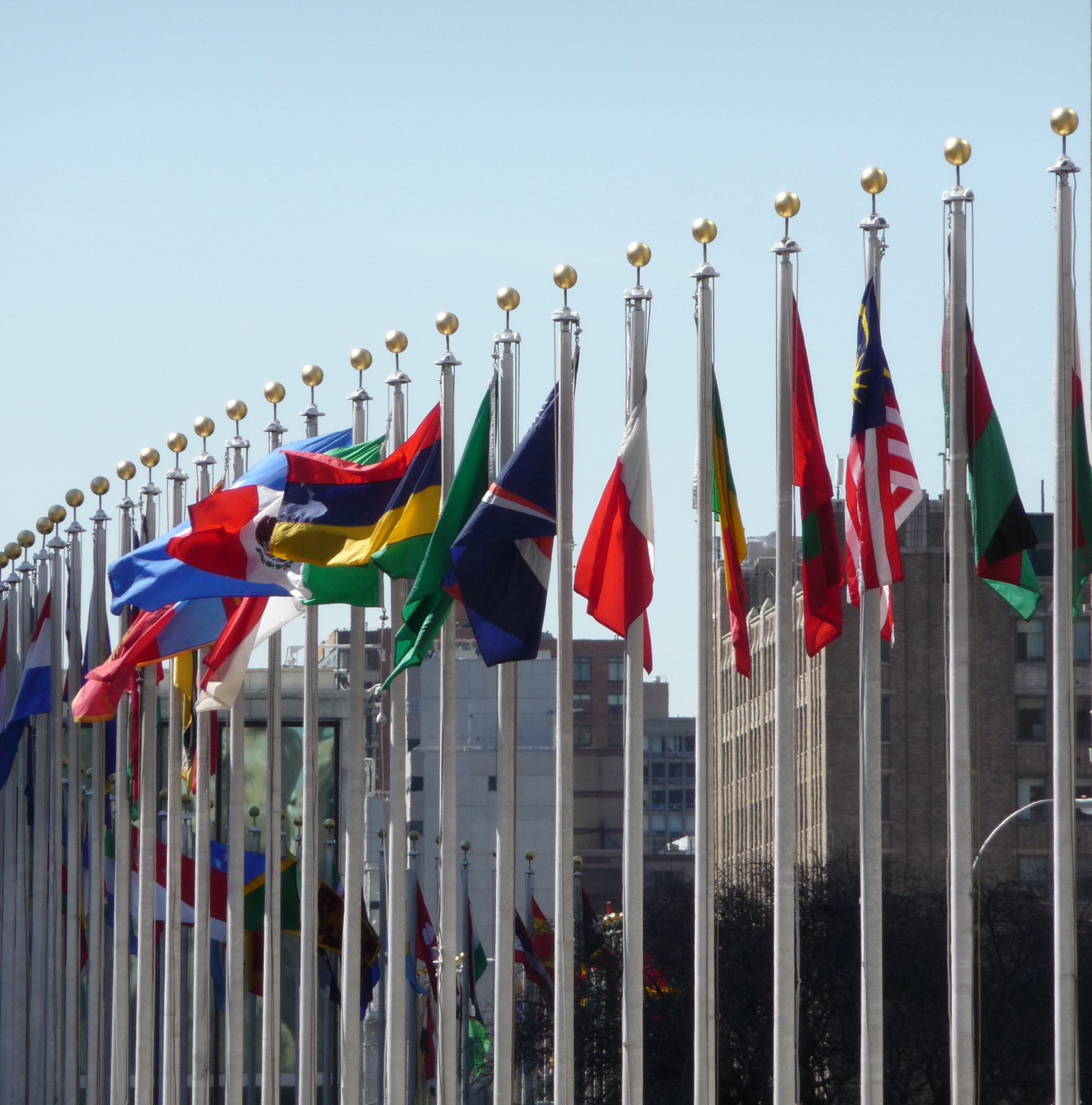 Photo of flags in a line.