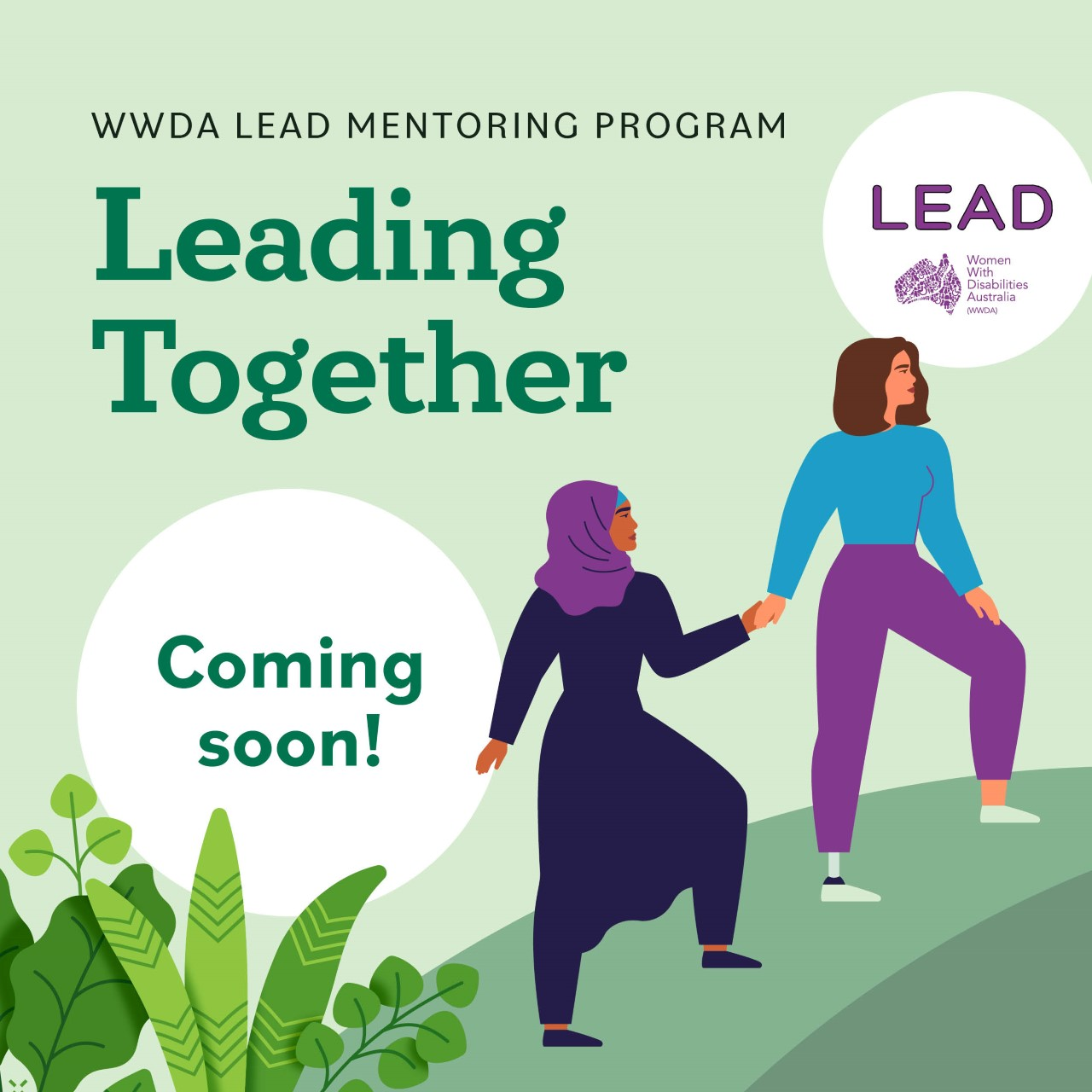 Light green background, dark green text reads WWDA Lead Mentoring Program, Leading Together. An illustration of two women, one with long brown hair and one wearing a headscarf. One of the woman are walking , leading the other one by holding her hand. With a white circle which said Coming soon!